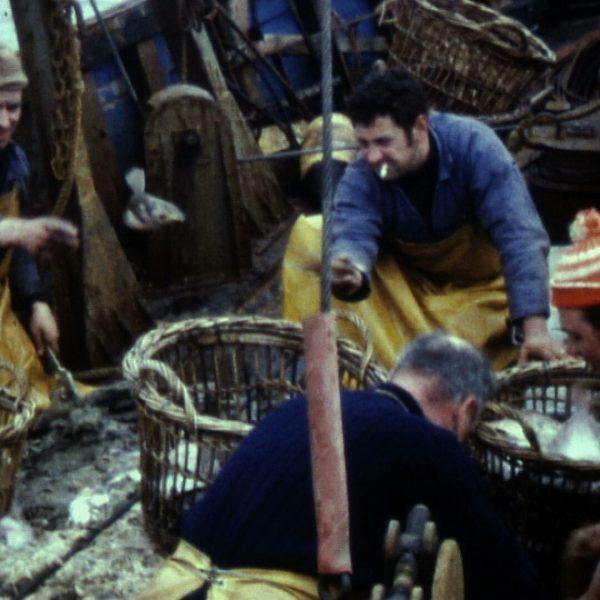 0338FI0003_1970_Etaples_tri du poisson